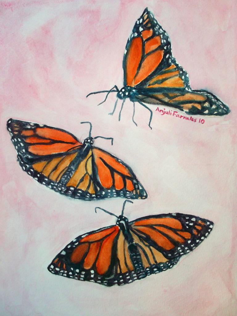 3 Monarchs © Anjuli 2017