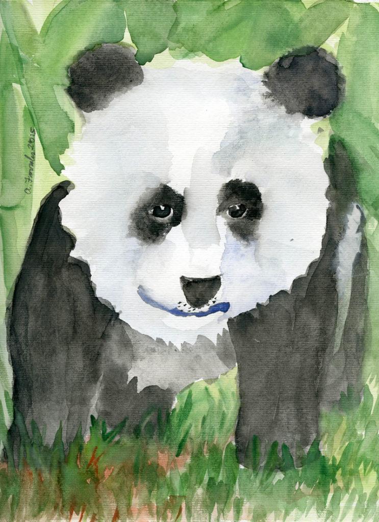 Baby Panda © Anjuli 2017