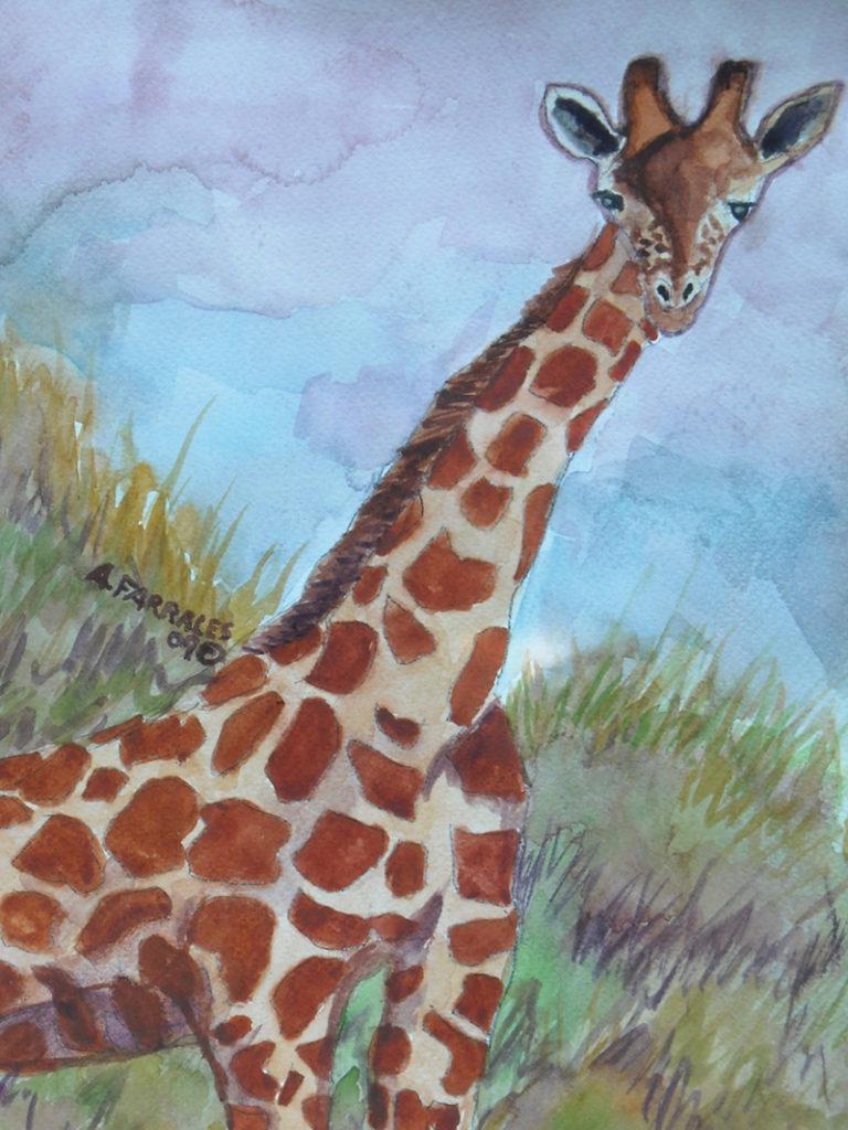 Sunset Giraffe Greeting Card © Anjuli 2017