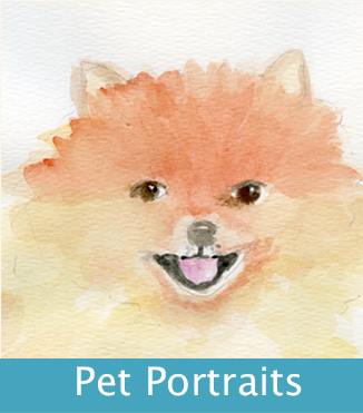 pet portrait box
